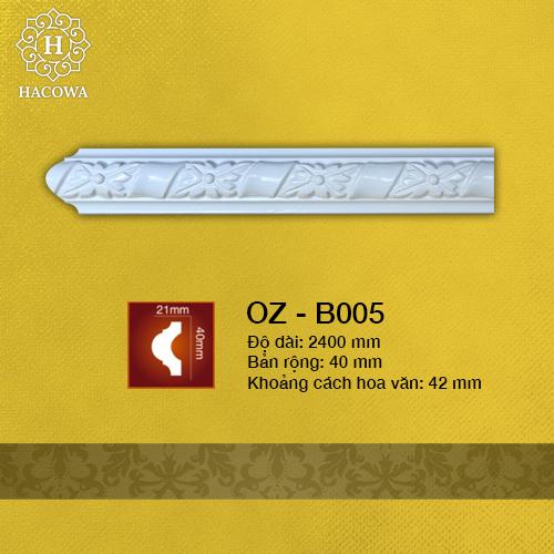 B005 – Chỉ Tường Hoa Văn 40mm