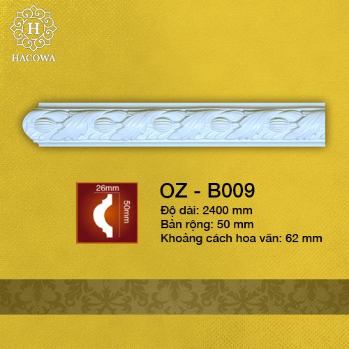 B009 – Chỉ Tường Hoa Văn 50mm