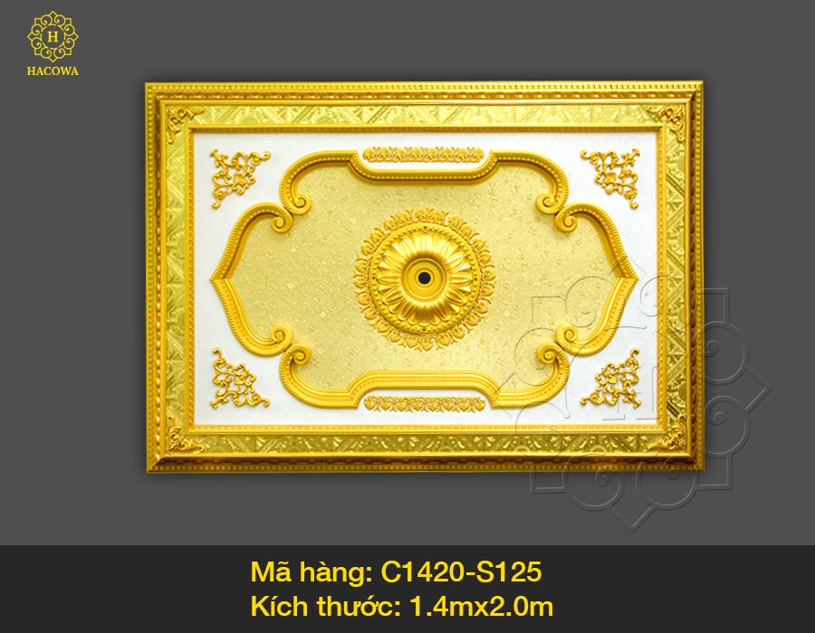 Tấm trần hình chữ nhật – C1420 – S125